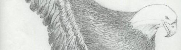 cropped-eagle.jpg