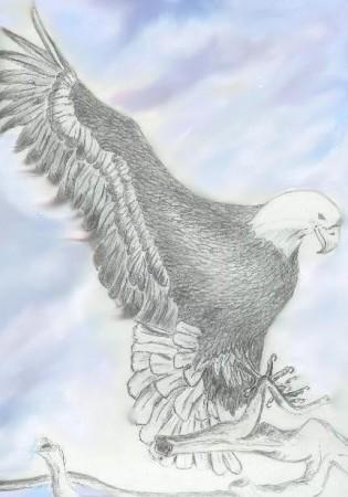 EagleII